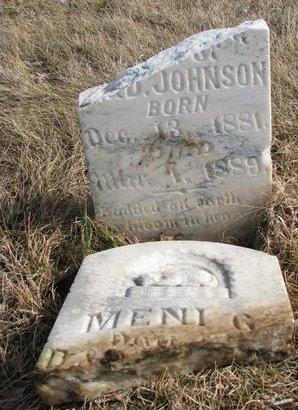JOHNSON, MENI G. - Dodge County, Nebraska | MENI G. JOHNSON - Nebraska Gravestone Photos