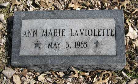 LAVIOLETTE, ANN MARIE - Dodge County, Nebraska | ANN MARIE LAVIOLETTE - Nebraska Gravestone Photos