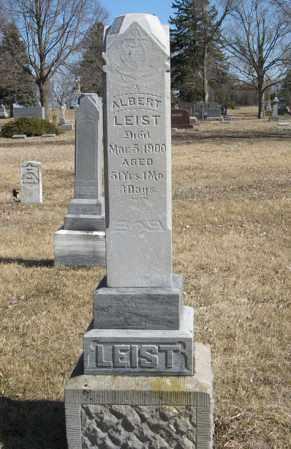 LEIST, ALBERT - Dodge County, Nebraska | ALBERT LEIST - Nebraska Gravestone Photos