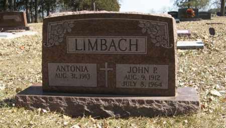 LIMBACH, JOHN P. - Dodge County, Nebraska | JOHN P. LIMBACH - Nebraska Gravestone Photos