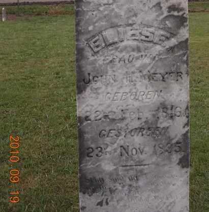 OTTEMAN MEYER, MARIE ELIZABETH - Dodge County, Nebraska | MARIE ELIZABETH OTTEMAN MEYER - Nebraska Gravestone Photos