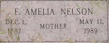 NELSON, E. AMELIA - Dodge County, Nebraska | E. AMELIA NELSON - Nebraska Gravestone Photos