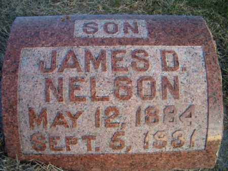 NELSON, JAMES D - Dodge County, Nebraska | JAMES D NELSON - Nebraska Gravestone Photos
