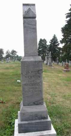 NELSON, JAMES EDGAR - Dodge County, Nebraska | JAMES EDGAR NELSON - Nebraska Gravestone Photos