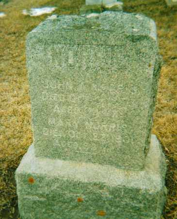 NORRIS, JOHN A. - Dodge County, Nebraska | JOHN A. NORRIS - Nebraska Gravestone Photos