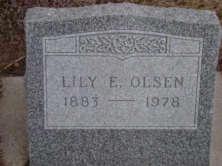 OLSEN, LILY E. - Dodge County, Nebraska | LILY E. OLSEN - Nebraska Gravestone Photos