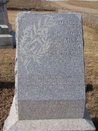 PLANTZ, MAMIE A. - Dodge County, Nebraska | MAMIE A. PLANTZ - Nebraska Gravestone Photos