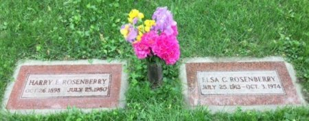ROSENBERRY, ELSA CLARA - Dodge County, Nebraska | ELSA CLARA ROSENBERRY - Nebraska Gravestone Photos