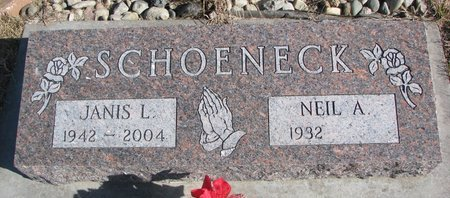 TECNER SCHOENECK, JANIS L. - Dodge County, Nebraska | JANIS L. TECNER SCHOENECK - Nebraska Gravestone Photos