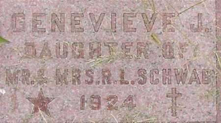 SCHWAB, GENEVIEVE - Dodge County, Nebraska | GENEVIEVE SCHWAB - Nebraska Gravestone Photos