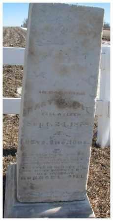 SILL, MARY W. - Dodge County, Nebraska | MARY W. SILL - Nebraska Gravestone Photos