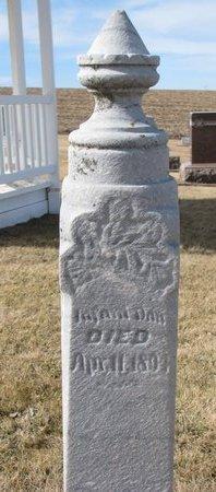 STARMER, INFANT DAUGHTER 1894 - Dodge County, Nebraska | INFANT DAUGHTER 1894 STARMER - Nebraska Gravestone Photos