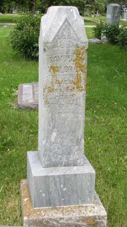 WALDRON, SAMUEL - Dodge County, Nebraska   SAMUEL WALDRON - Nebraska Gravestone Photos