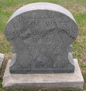 WATT, PAUL ARTHUR - Dodge County, Nebraska   PAUL ARTHUR WATT - Nebraska Gravestone Photos