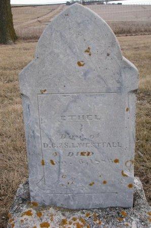 WESTFALL, ETHEL - Dodge County, Nebraska | ETHEL WESTFALL - Nebraska Gravestone Photos