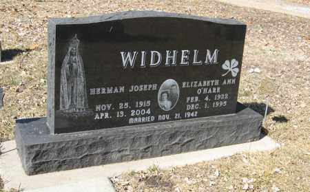 WIDHELM, ELIZABETH ANN - Dodge County, Nebraska | ELIZABETH ANN WIDHELM - Nebraska Gravestone Photos