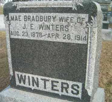 BRADBURY WINTERS, MAE - Dodge County, Nebraska | MAE BRADBURY WINTERS - Nebraska Gravestone Photos