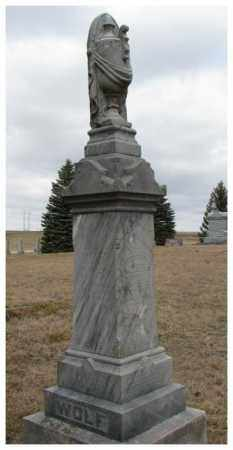 WOLF, MARY D.T. - Dodge County, Nebraska   MARY D.T. WOLF - Nebraska Gravestone Photos