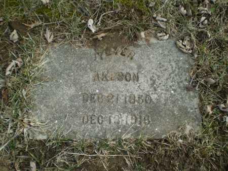 AKESON, PETER - Douglas County, Nebraska | PETER AKESON - Nebraska Gravestone Photos