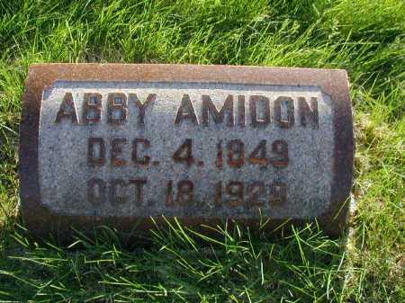AMIDON, ABBY - Douglas County, Nebraska | ABBY AMIDON - Nebraska Gravestone Photos