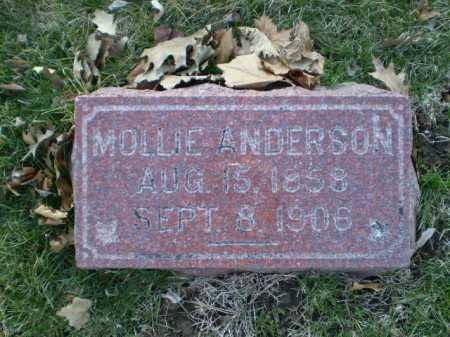 ANDERSON, AMALLIE - Douglas County, Nebraska | AMALLIE ANDERSON - Nebraska Gravestone Photos