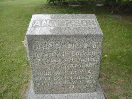 ANDERSON, JOHN W. - Douglas County, Nebraska | JOHN W. ANDERSON - Nebraska Gravestone Photos