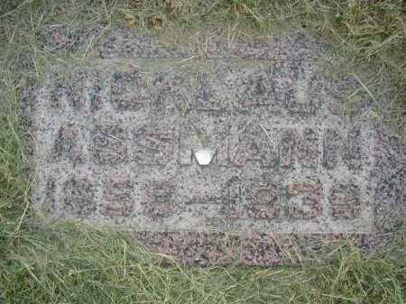 ASSMANN, NICKLAUS - Douglas County, Nebraska | NICKLAUS ASSMANN - Nebraska Gravestone Photos