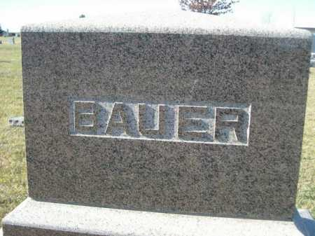 BAUER, FAMILY - Douglas County, Nebraska | FAMILY BAUER - Nebraska Gravestone Photos