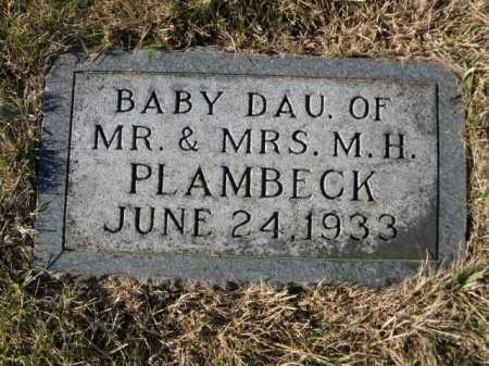 PLAMBECK, BABY DAU. OF MR. & MRS. M. H. - Douglas County, Nebraska | BABY DAU. OF MR. & MRS. M. H. PLAMBECK - Nebraska Gravestone Photos