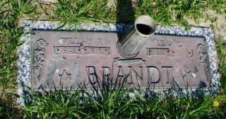 BRANDT, LENA - Douglas County, Nebraska | LENA BRANDT - Nebraska Gravestone Photos