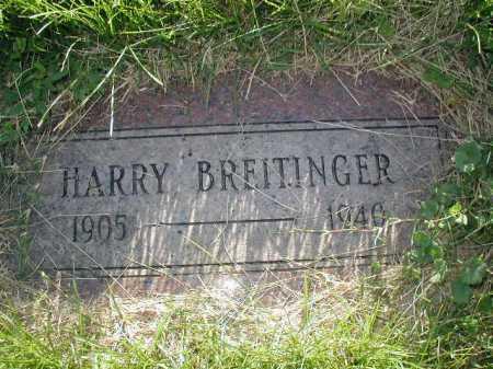 BREITINGER, HARRY - Douglas County, Nebraska | HARRY BREITINGER - Nebraska Gravestone Photos