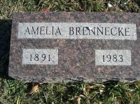 BRENNECKE, AMELIA - Douglas County, Nebraska | AMELIA BRENNECKE - Nebraska Gravestone Photos