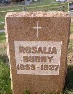 BUDNY, ROSALIA - Douglas County, Nebraska | ROSALIA BUDNY - Nebraska Gravestone Photos