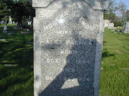 DAEMON, ROSINA - Douglas County, Nebraska | ROSINA DAEMON - Nebraska Gravestone Photos