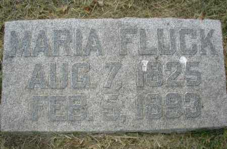 FLUCK, MARY - Douglas County, Nebraska | MARY FLUCK - Nebraska Gravestone Photos