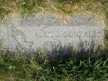 GONZALES, ALEX J - Douglas County, Nebraska | ALEX J GONZALES - Nebraska Gravestone Photos