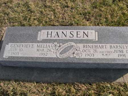 HANSEN, RINEHART BARNEY - Douglas County, Nebraska | RINEHART BARNEY HANSEN - Nebraska Gravestone Photos