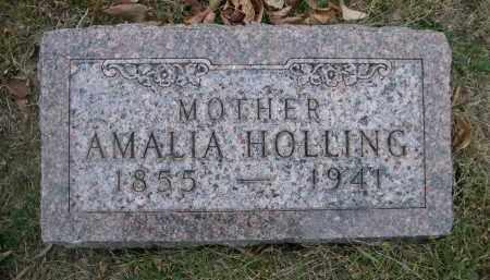 HOLLING, AMALIA - Douglas County, Nebraska | AMALIA HOLLING - Nebraska Gravestone Photos