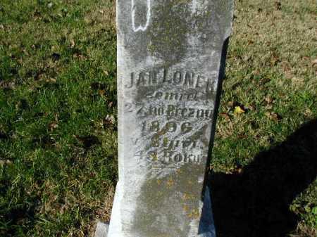 LONEK, JAN - Douglas County, Nebraska   JAN LONEK - Nebraska Gravestone Photos