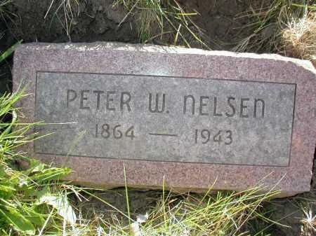 NELSON, PETER W - Douglas County, Nebraska | PETER W NELSON - Nebraska Gravestone Photos