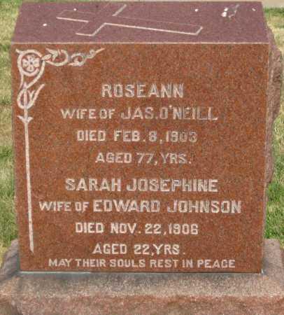 O'NEILL, ROSEANN - Douglas County, Nebraska | ROSEANN O'NEILL - Nebraska Gravestone Photos