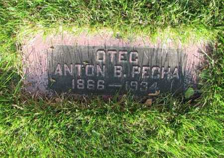 PECHA, ANTON B - Douglas County, Nebraska | ANTON B PECHA - Nebraska Gravestone Photos