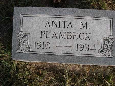 PLAMBECK, ANITA M. - Douglas County, Nebraska | ANITA M. PLAMBECK - Nebraska Gravestone Photos