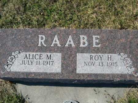 RAABE, ALICE - Douglas County, Nebraska | ALICE RAABE - Nebraska Gravestone Photos