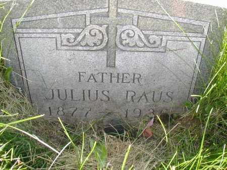 RAUS, JULIUS - Douglas County, Nebraska | JULIUS RAUS - Nebraska Gravestone Photos