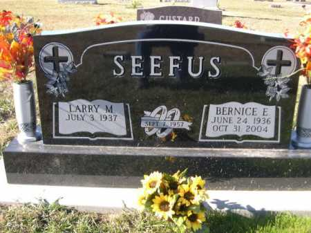 SEEFUS, LARRY M. - Douglas County, Nebraska | LARRY M. SEEFUS - Nebraska Gravestone Photos