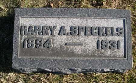 SPECKELS, HARRY A. - Douglas County, Nebraska   HARRY A. SPECKELS - Nebraska Gravestone Photos