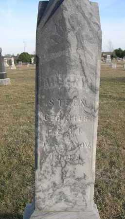 STEEN, HENRY - Douglas County, Nebraska | HENRY STEEN - Nebraska Gravestone Photos
