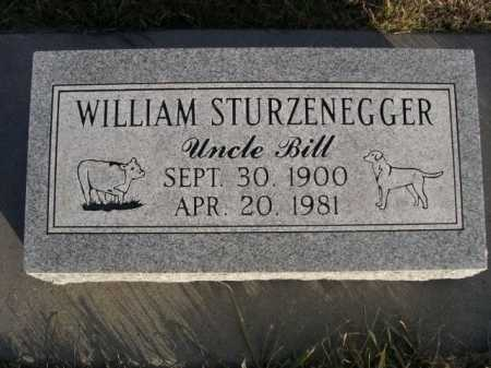 STURZENEGGER, WILLIAM - Douglas County, Nebraska | WILLIAM STURZENEGGER - Nebraska Gravestone Photos
