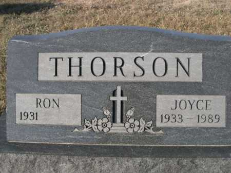 THORSON, RON - Douglas County, Nebraska | RON THORSON - Nebraska Gravestone Photos